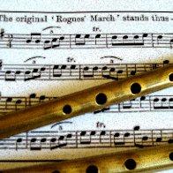 rogue-whistles